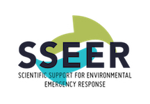 sseer.logo-transparent copy 2
